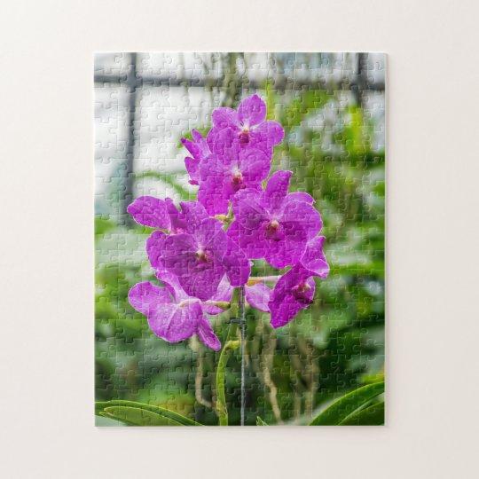 Orchids photo puzzle