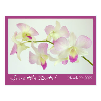 Orchids Postcard, Save the Date! Postcard