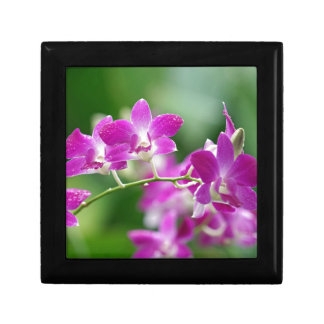 orchids small square gift box