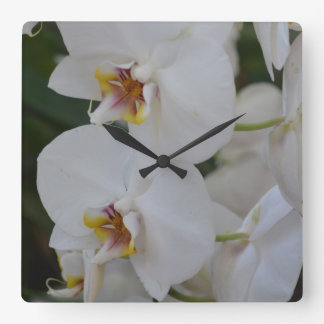 Orchids Square Wall Clock