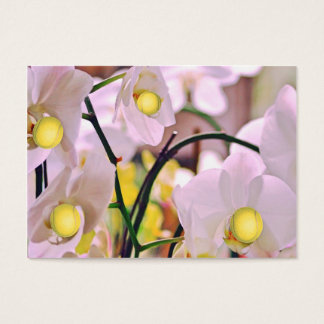 Orchids Tennis Bus.Card Business Card