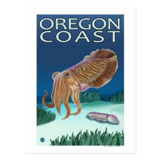 Oregon Coast Cuttlefish Postcard
