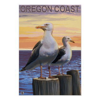 Oregon Coast Sea Gulls Posters