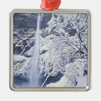 Oregon, Columbia Gorge National Scenics Area, Silver-Colored Square Decoration