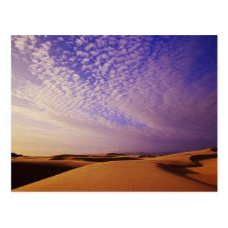 Oregon Dunes National Recreation Area, Oregon Postcard