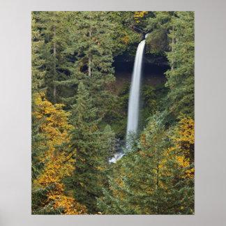 Oregon, Silver Falls State Park, North Falls Poster