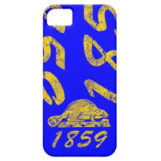 Oregon State Flag Grunge 1859 Beaver Salem Love iPhone 5 Cases