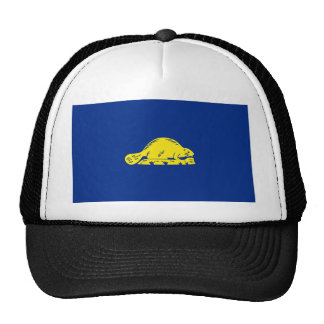 Oregon State Flag (reverse) Trucker Hat