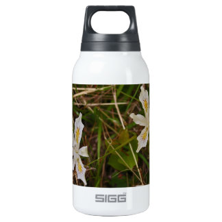 Oregon Wild Iris 0.3L Insulated SIGG Thermos Water Bottle