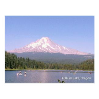 Oregon's beautiful Trillium Lake Postcard