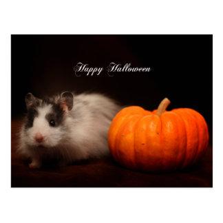 Oreo's Halloween Postcard