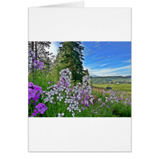 organic farming card