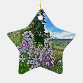 organic farming ceramic star decoration