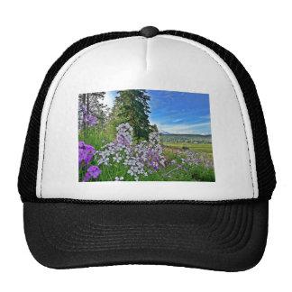 organic farming hats