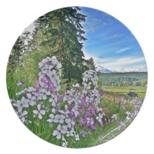 organic farming plates