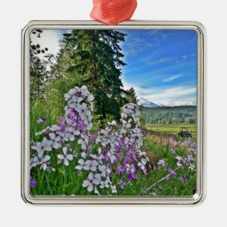 organic farming Silver-Colored square decoration