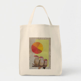 """Organic Grocery Tote: """"Shape and Color"""" Grocery Tote Bag"""