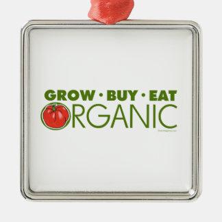 Organic Metal Ornament