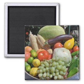 organic square magnet