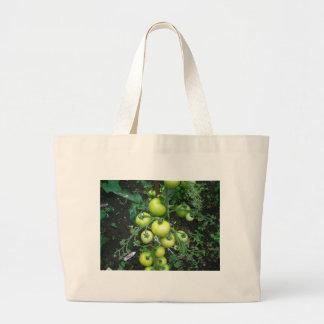 Organic Tomatoes Bag