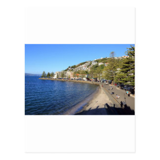 Oriental Bay Wellington Harbour Postcard