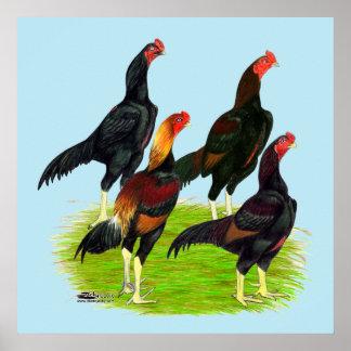 Oriental Game Fowl Quartet Poster