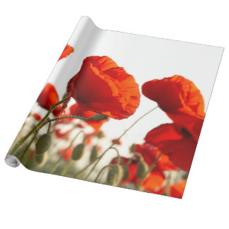 Oriental Poppies - Wrapping Paper