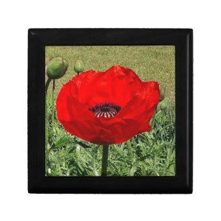 Oriental Poppy Gift Box
