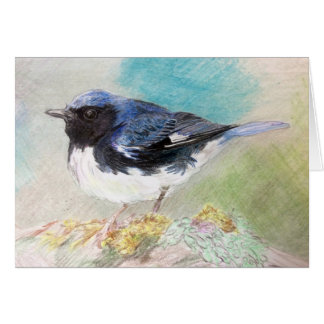 Original Art Colored Pencil Bird Drawing Card