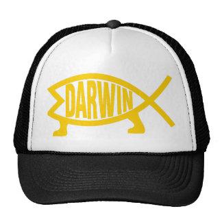 Original Darwin Fish (Mustard) Cap