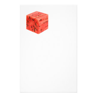 Original Fresh Sweet Red Watermelon Food Cube Stationery