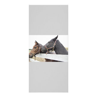 Original Horse Whisperer Rack Card Template