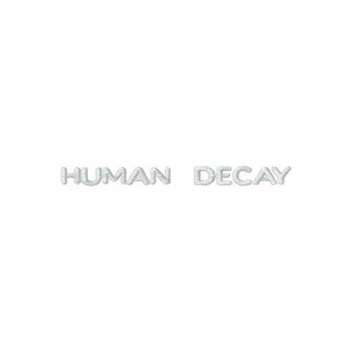 Original Human Decay hoddie Embroidered Hoodie