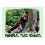 Original Tree Hugger Brown Bear Postcard