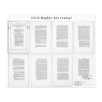 ORIGINAL United States Civil Rights Act of 1964 Gallery Wrap Canvas