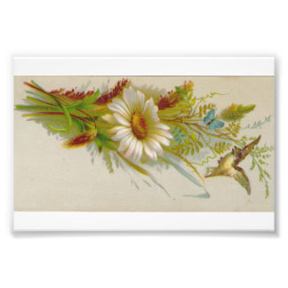 Original Vintage Card Image Flower Bird Photo Print
