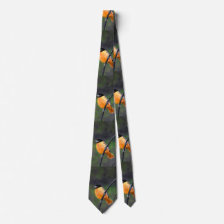 Oriole Painting - Original Bird Art Tie