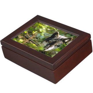 """Orion"" Keepsake Box"