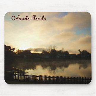 Orlando Lake Mug Mouse Pad