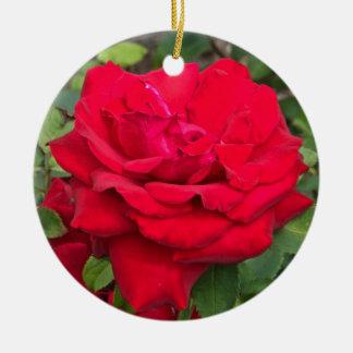 Ornament -- Ceramic Round Ornament