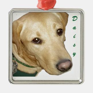Ornament - Customize it!