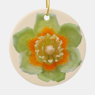 Ornament - Tulip Poplar Tulip on Cream