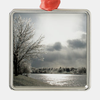 ornament with photo of icy, winter landscape