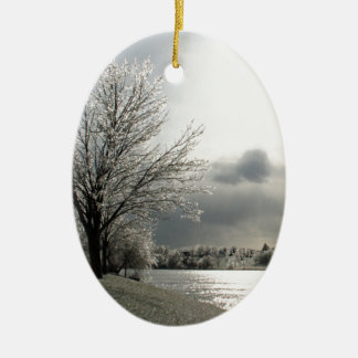 ornament with photo of icy winter landscape