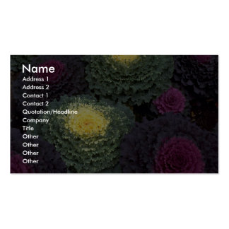 Ornamental cabbage texture business cards