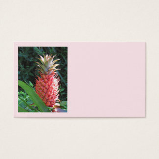 Ornamental Pineapple Business Card