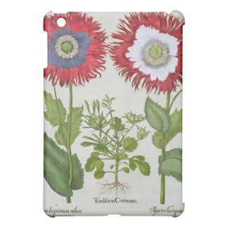 Ornamental Poppies, from the 'Hortus Eystettensis' iPad Mini Covers