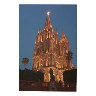 Ornate Cathedral Lit At Night Wood Wall Art