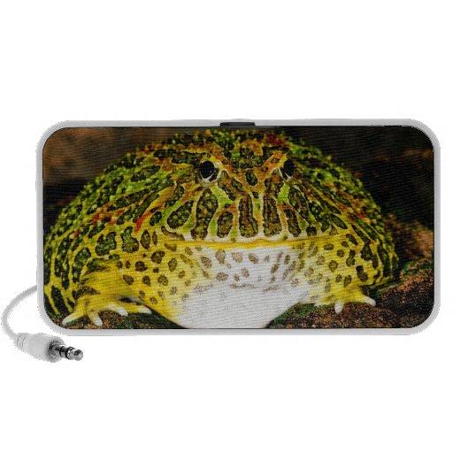 Ornate Horn Frog, Ceratophrys ornata, Native Notebook Speaker