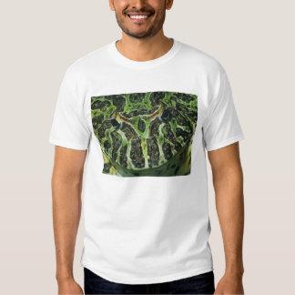 Ornate Horned Frog, (Ceratophrys ornata), South T-shirts